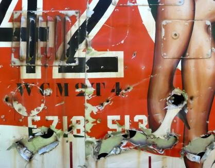 150 X 100 LEGS 42 (close up)