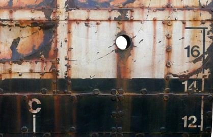 150 X 100 SEA TRAVELER close up